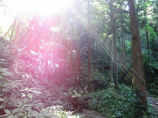 石老山の光