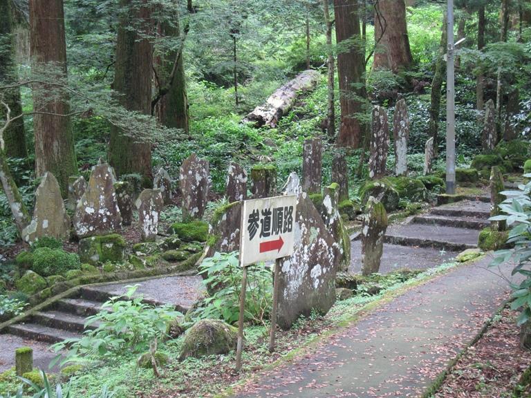 最乗寺の苔むす参道