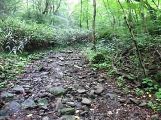 飛龍の滝への山道