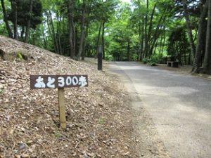 濃溝の滝まで300歩