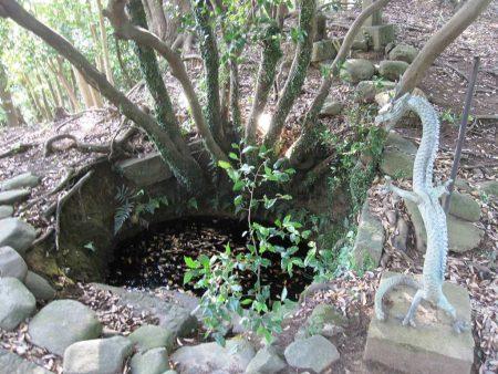 白山神社白山池