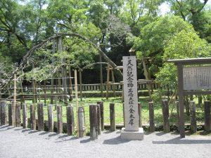 三嶋大社,金木犀