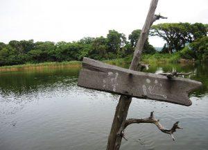 大瀬神社・神池
